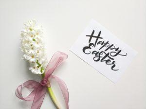 Vintessa wünscht fröhliche Ostern!